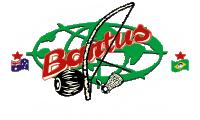 Logo Bantus Capoeira Australia